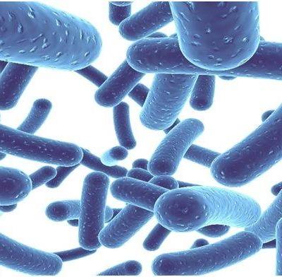 (Magyar) Probiotikummal a fogszuvasodás ellen